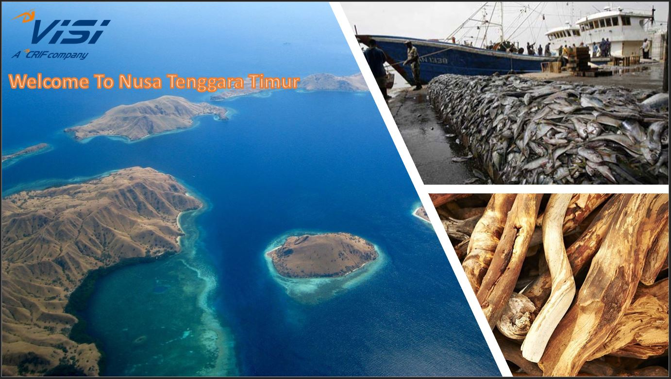 Growth of Several Business in Second Quarter in East Nusa Tenggara Sources of Growth of Several Business in Second Quarter in East Nusa Tenggara